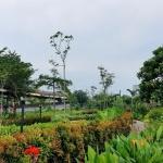 green-pramuka-city-taman2